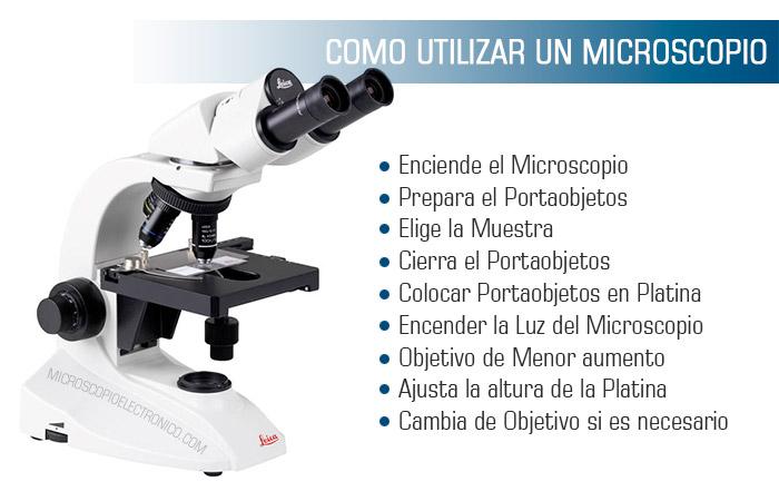Cómo usar microscopio